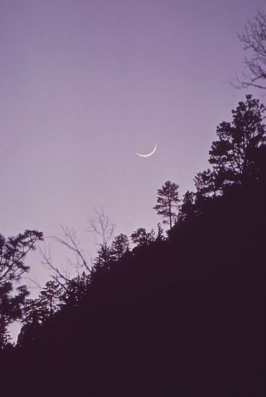 Crescent Moon Purple Sky