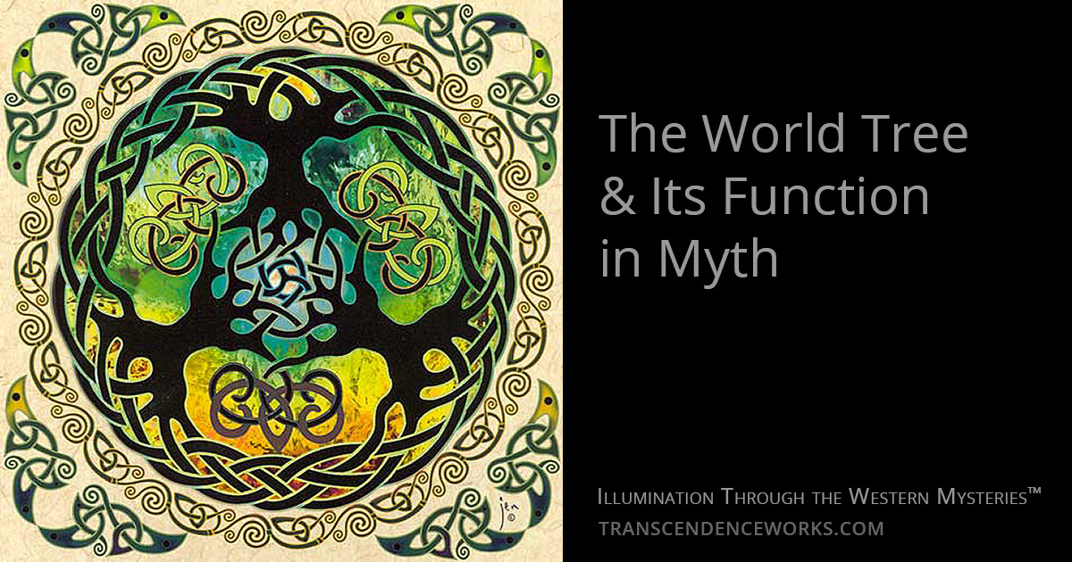The World Tree & Its Function In Myth