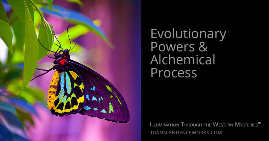 Evolutionary Power & Alchemical Process